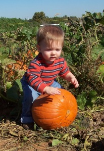 Caston was 10 months old here, hard to believe his 3 years old now.  This was his first pumpkin patch trip in 2010.
